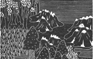 Rosanna Merklin, Spitzen, Holzschnitt, 20,4 x 26,9 cm, 2017